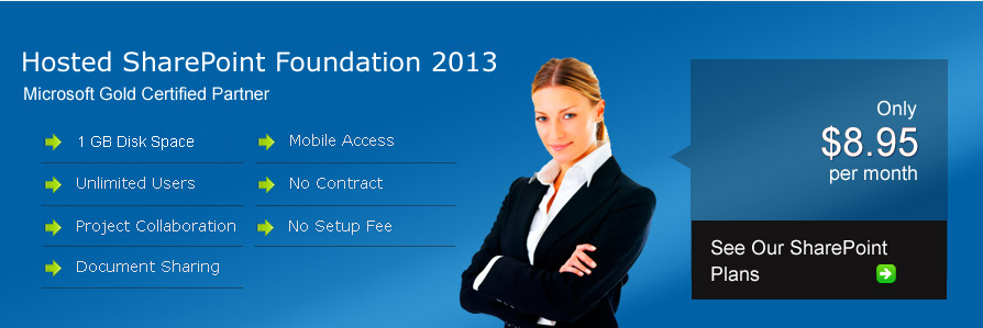 2013 foundation.png
